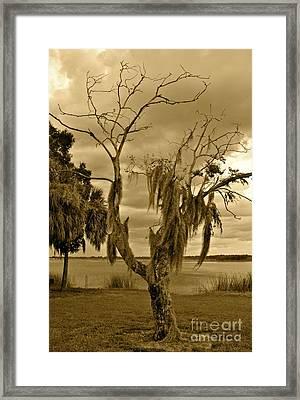 Approaching Storm Framed Print by Carol  Bradley