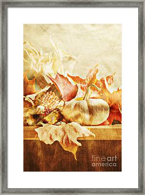 Autumn Framed Print by HD Connelly