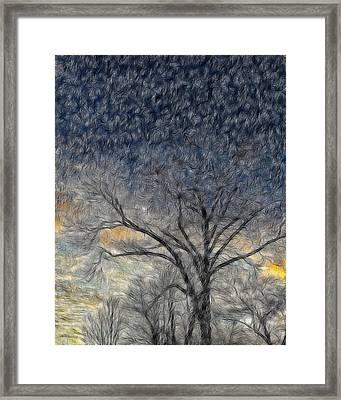 Bare Limbs Framed Print by Misty Blankenship