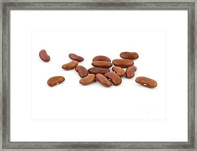 Beans Framed Print by Blink Images