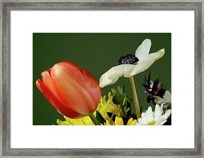 Bouquet Of Flowers Framed Print by Sami Sarkis