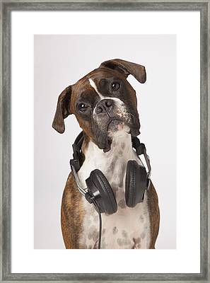 Boxer Dog With Headphones Framed Print