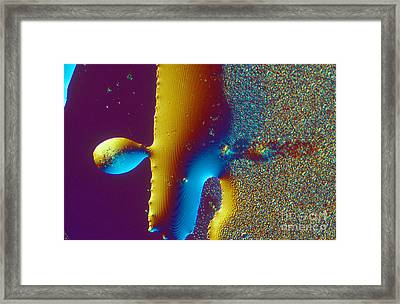 Buckyball Crystal Framed Print by Michael W. Davidson