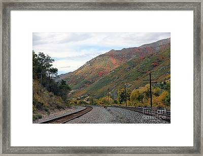 Canyon Tracks Framed Print