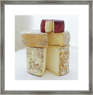 Cheese Selection Framed Print by David Munns