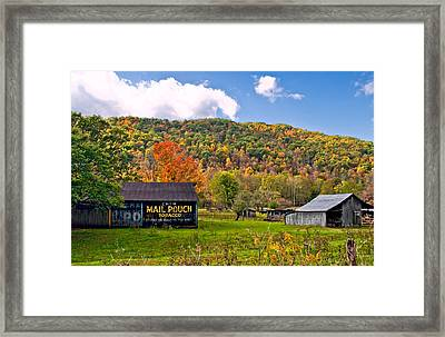 Chew Mail Pouch Framed Print by Steve Harrington