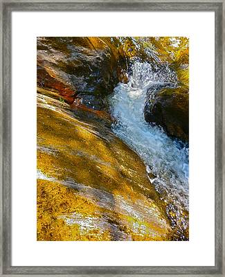 Childs Brook Close Up Framed Print by George Ramos