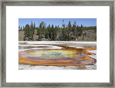 Chromatic Pool Hot Spring, Upper Geyser Framed Print by Richard Roscoe