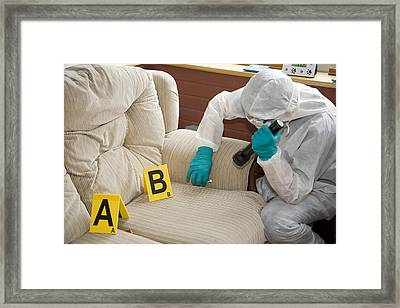 Collecting Evidence Framed Print by Paul Rapson