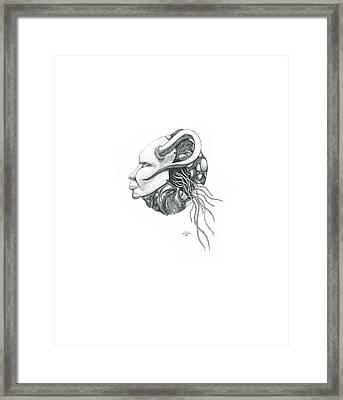 Creepy Curiosity IIi Framed Print by Jeff Gould