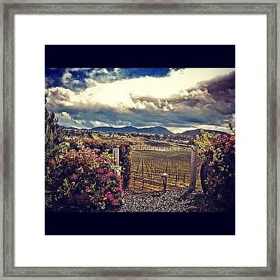 #desert #resort #paradise #flowers Framed Print