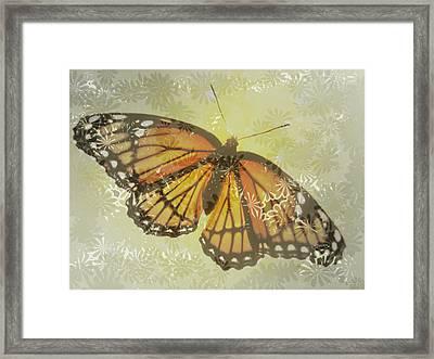 Designer Butterfly Collection Framed Print by Debra     Vatalaro