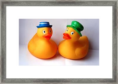 2 Ducks Framed Print by Juan  Cruz