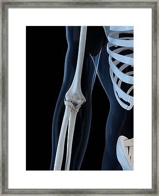 Elbow, Artwork Framed Print by Sciepro
