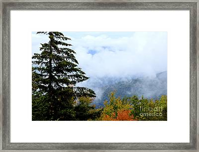 First Day Of Fall Framed Print by Thomas R Fletcher