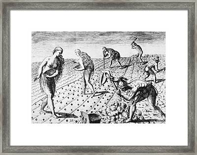 Florida Native Americans, 1591 Framed Print