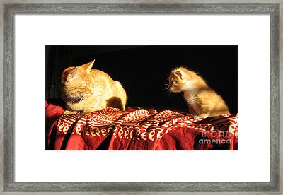 Foxy And Cutters Framed Print by Barbara Marcus