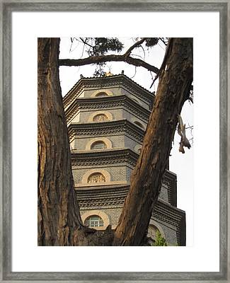 Framed By Nature Framed Print by Alfred Ng