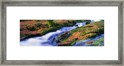 Glenmacnass Waterfall, Co Wicklow Framed Print by The Irish Image Collection