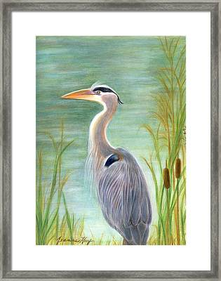 Great Blue Heron Watches By Pond Framed Print
