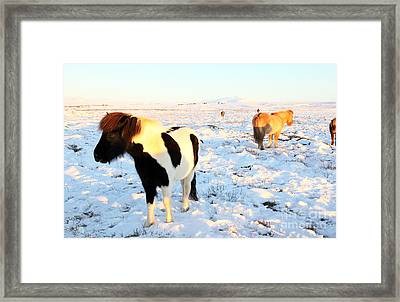 Framed Print featuring the photograph Iceland by Milena Boeva