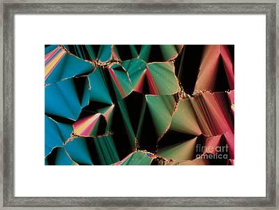 Liquid Crystalline Dna Framed Print by Michael W. Davidson