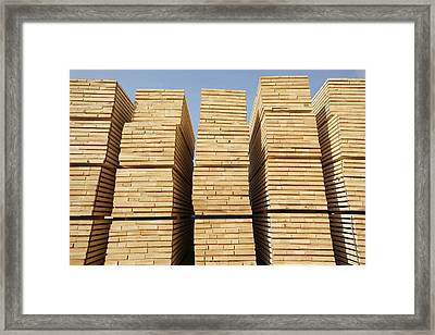 Logged Timber From The Tropical Framed Print