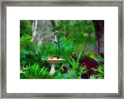 Lorikeets And Rosellas Framed Print