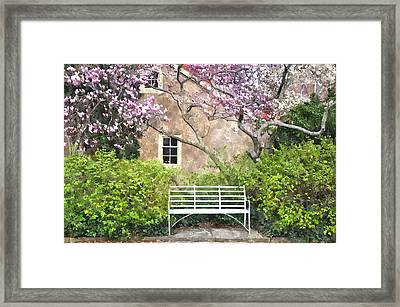 Magnolia Garden Framed Print by Andrew Dinh