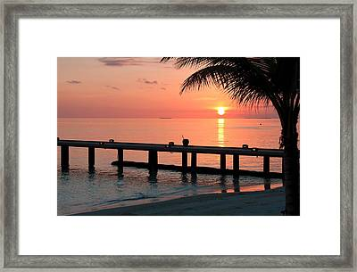 Maldives Morning  Framed Print by Shirley Mitchell