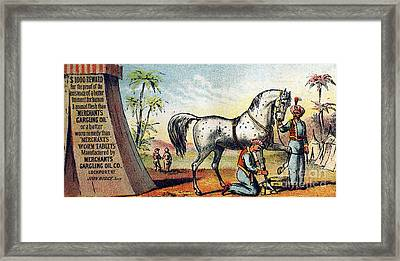 Medicine Trade Card, C1880 Framed Print by Granger