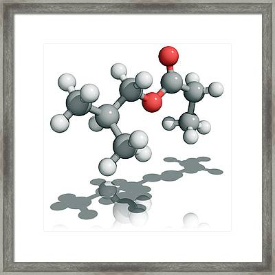 2-methylpropyl Propanoate Molecule Framed Print by Laguna Design