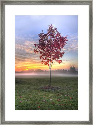 Morning Landscape Framed Print by Nick Mares