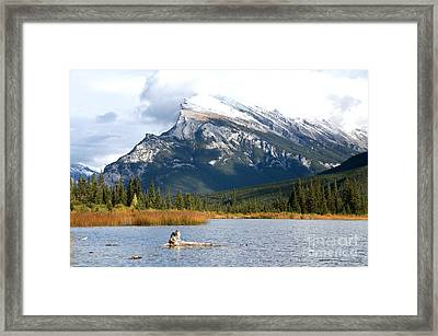 Mt Rundle Banff National Park Framed Print by Bob and Nancy Kendrick
