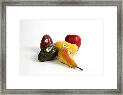 Organic Produce Framed Print by Photo Researchers