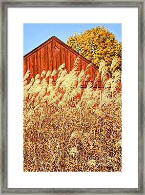 Red Barn  Framed Print by HD Connelly