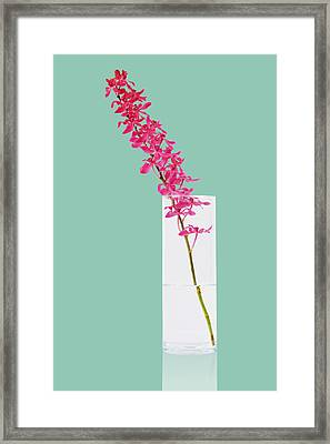 Red Orchid Bunch Framed Print by Atiketta Sangasaeng