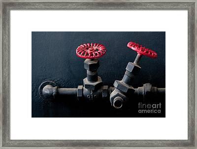 2 Red Valves Framed Print by Dan Holm