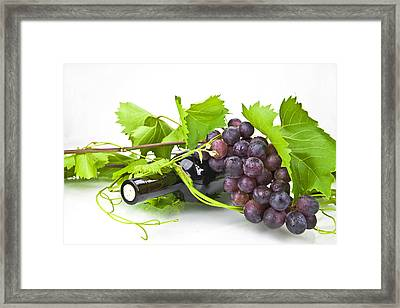 Red Wine Framed Print by Joana Kruse