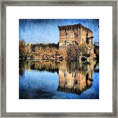 Reflection Framed Print