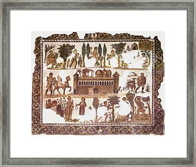 Roman Mosaic Framed Print