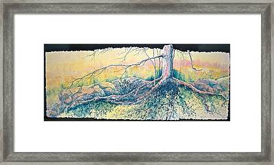 Rooted In Time Framed Print by Carolyn Rosenberger