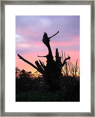 Santa Barbara California Framed Print by Ian Stevenson