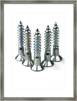 Silver Screws Framed Print by Blink Images