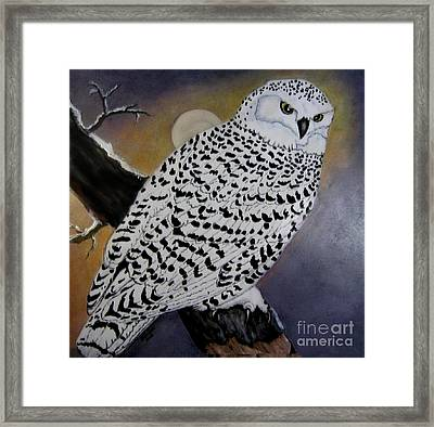 Snowy Owl And Moon Framed Print by Sandra Maddox