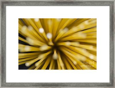 Spaghetti Framed Print by Mats Silvan