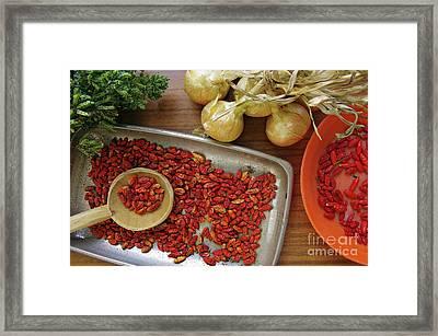 Spicy Still Life Framed Print
