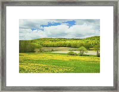 Spring Farm Landscape In Maine Framed Print