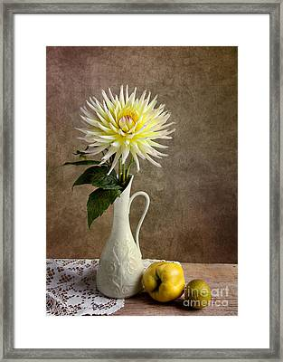 Still Life With Dahila Framed Print by Nailia Schwarz