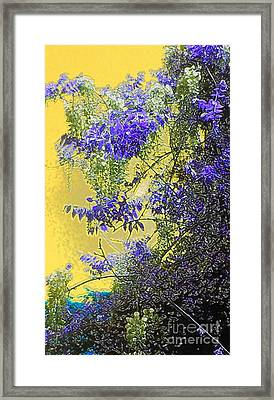 Framed Print featuring the photograph Sun Setting On Wisteria by Holly Martinson